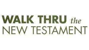 NT Classic Logo